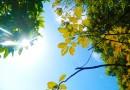 Lietuvoje įsivyrauja rudeniški orai