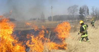 Savaitgalį Kaišiadorių ugniagesiai net 10 kartų vyko gesinti degančios žolės