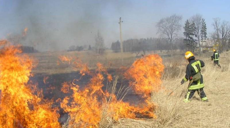 ugniagesiai dega žolė