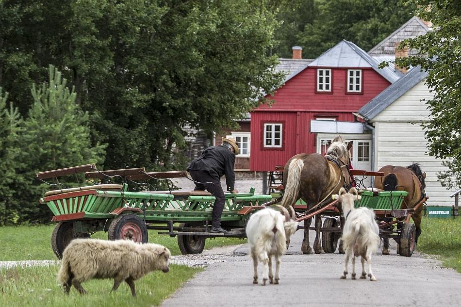 lietuvos-liaudies-buities-muziejus
