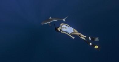 Susipažinkite su mergina, kuri visiškai nuoga plaukioja vandenyne su rykliais ir rajomis