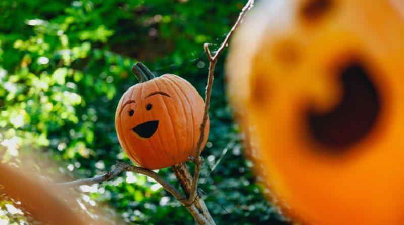 helloween helovinas moliūgai